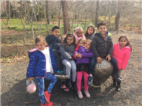 Kindergarten Students Visited The Long House Reserve photo