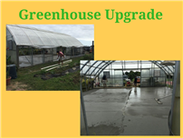 Greenhouse Upgrade photo