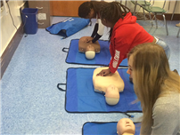 High School Students Learning Life Saving Skills photo